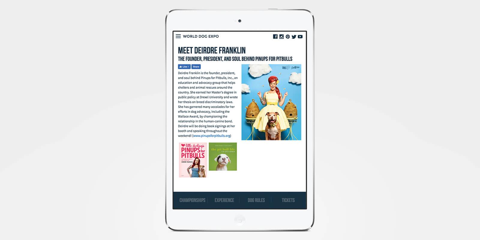 Website on iPad
